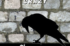 Dj Reactive – The Crow is Crazy