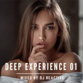 Deep Experience 01 (Mixed by Dj Reactive)